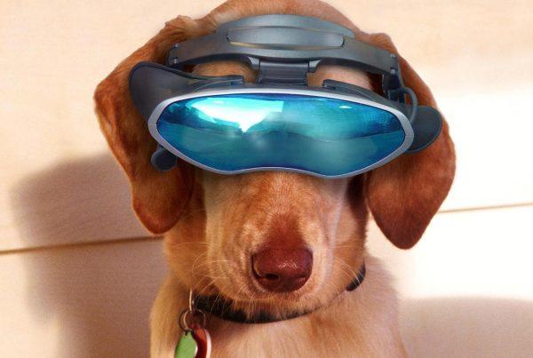dieren gadgets - Techness