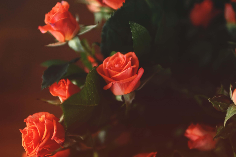 De leukste Valentijn cadeaus